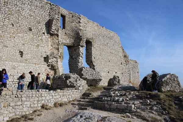 ruines d'un chateau en ardeche