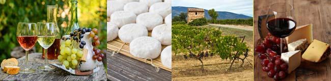degustaion de vins naturels