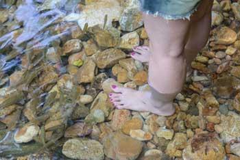 ardeche riviere