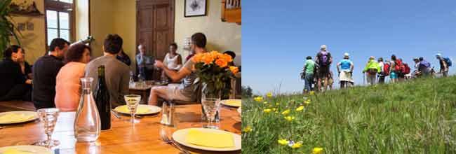 expérience en table et chambre d'hôtes